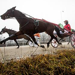 20151226: SLO, Equestrian - Dirke Sv. Stefana, Hipodrom Stozice