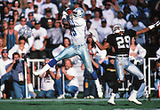 Dallas Cowboys wide receiver Michael Irvin (8) leaps to catch a pass while covered by Oakland Raiders cornerback Albert Lewis (29) during the NFL football game against the Oakland Raiders on Nov. 19, 1995 in Oakland, Calif. The Cowboys won the game 34-21. (©Paul Anthony Spinelli)