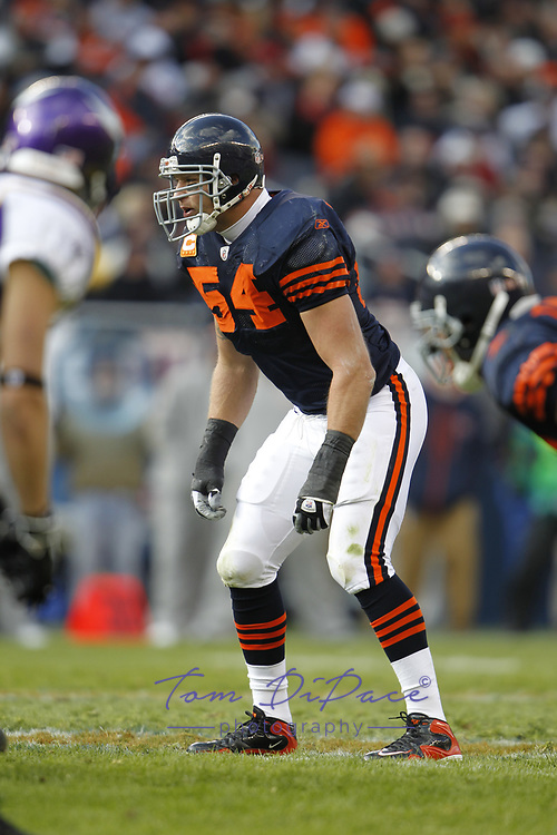 ©2010 Tom DiPace Photography<br /> All Rights Reserved<br /> 561.968.0600/Cell 561 .818.8288<br /> All Rights Reserved<br /> tdfoto@comcast.net<br /> Brian Urlacher of the Chicago Bears.<br /> Soldier Field- Chicago, IL<br /> 11.14.2010<br /> By Tom DiPace©