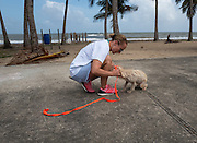 Chrissy Beckles places a leash on the small female dog found roaming on Guayanes Beach, Puerto Rico. She will now be taken to a veterinary clinic for exam.