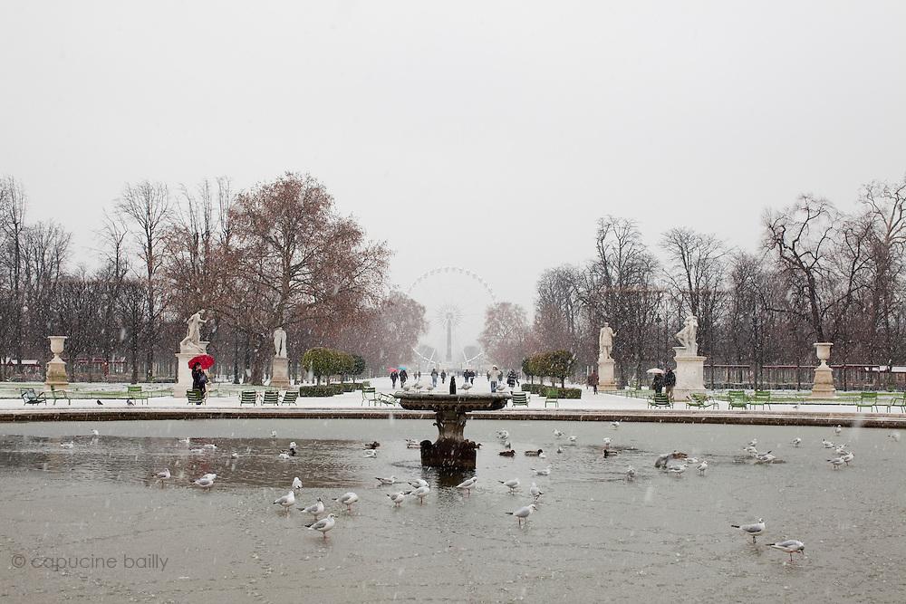 Paris, France. 7 Decembre 2010.Jardin des Tuileries (1er Arrondissement)..Paris, France. December 7th 2010.Jardin des Tuileries (1st Arrondissement)