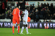 Chelsea goalkeeper Petr Cech chats to Swansea city's Bafetimbi Gomis at the end of the match. Barclays Premier League match, Swansea city v Chelsea at the Liberty Stadium in Swansea, South Wales on Saturday 17th Jan 2015.<br /> pic by Andrew Orchard, Andrew Orchard sports photography.