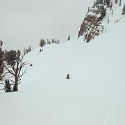 Jess McMillan traverses the Tetons during a winter storm.