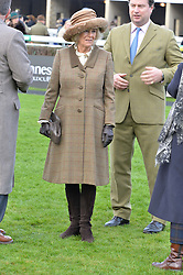NEWBURY, ENGLAND 26TH NOVEMBER 2016: Jo Thornton & HRH The Duchess of Cornwall at Hennessy Gold Cup meeting Newbury racecourse Newbury England. 26th November 2016. Photo by Dominic O'Neill