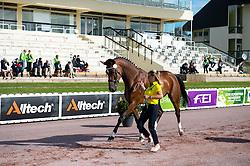 Elisa Melaranci, (BRA), Zabelle - Horse Inspection Para Dressage - Alltech FEI World Equestrian Games™ 2014 - Normandy, France.<br /> © Hippo Foto Team - Jon Stroud<br /> 25/06/14