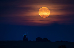 © Licensed to London News Pictures. 21/09/2021. Halnaker, UK. The September full moon, known as the Harvest Moon rises above Halnaker Windmill near Chichester, West Sussex. Photo credit: Peter Macdiarmid/LNP