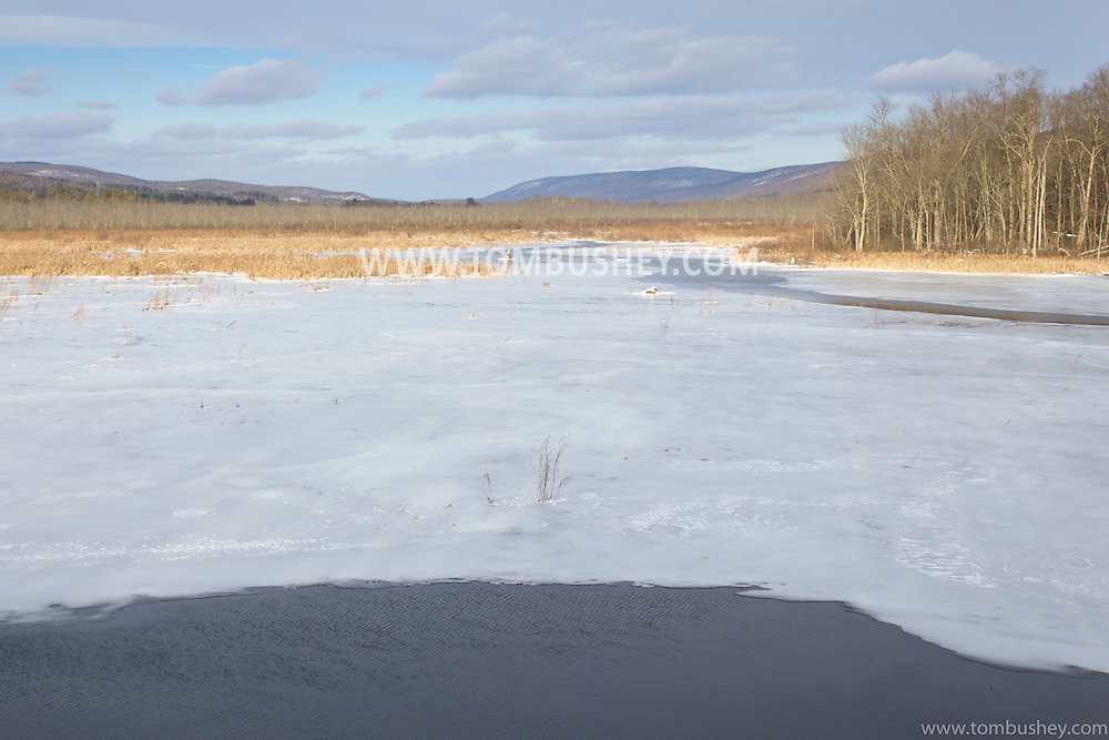 Mamakating, New York -  Winter scenes at the Bashakill Wildlife Management Area on Jan. 1, 2013.