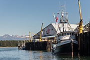 A fishing boat tied to the Icicle Seafoods dock in the tiny village of Petersburg on Mitkof Island along the Wrangell Narrows in Frederick Sound with the Alaska Coast Range of mountains behind on Mitkof Island, Alaska. Petersburg settled by Norwegian immigrant Peter Buschmann is known as Little Norway due to the high percentage of people of Scandinavian origin.