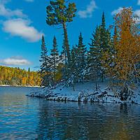 Fall colors glow through an early season snowfall at Lake of the Woods, Ontario, Canada.