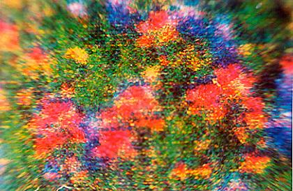 Fotografische Mikroskopie-Aufnahmen kleinster Ausschnitte von im Altpapier gefundenen Print-Materialien. <br /> <br /> Microscopic photographs of found printed papers in recycling bins or public waste paper baskets.