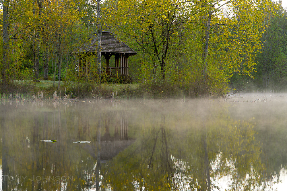A layer of mist hovers of the pond of Battle Point Park on a cold psring morning