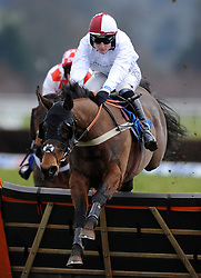 Ronaldinho ridden by Thomas Bellamy during the SIS Handicap Hurdle (Class 4) (4YO plus) - Photo mandatory by-line: Harry Trump/JMP - Mobile: 07966 386802 - 09/03/15 - SPORT - Equestrian - Horse Racing - Taunton Racing - Taunton Racecourse, Somerset, England.