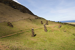 Chile, Easter Island: Sculptures at the quarry Rano Raraku where all the large sculptures were carved..Photo #: ch255-33838.Photo copyright Lee Foster www.fostertravel.com lee@fostertravel.com 510-549-2202