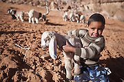 A young Bedouin boy holds a lamb at his family's remote home encampment in Wadi Rum, Jordan.