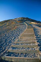 Sand Ladder at Windy Ridge, Mt. St. Helens National Volcanic Monument, Washington, US