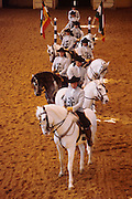 SPAIN, ANDALUSIA JEREZ DE LA FRONTERA; the Royal School of Andalusian Equestrian Art, origin of the Spanish Riding School of Vienna