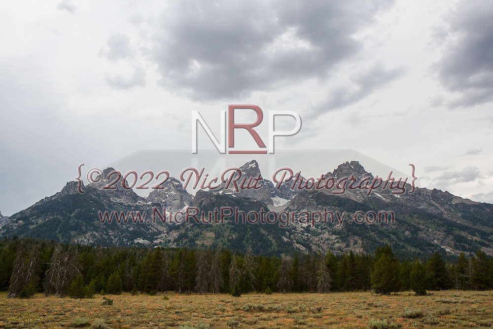 August 3, 2014: Yellowstone National Park Vacation 2014 - Day1