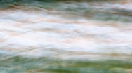 Running through the daisies an abstract image made by motion blur by moving the camera during exposure in an experimental method.