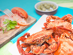 Cooked velvet crabs served with tomatoes and olive