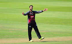 Peter Trego of Somerset celebrates the wicket of Daryl Mitchell of Worcestershire.  - Mandatory by-line: Alex Davidson/JMP - 17/08/2016 - CRICKET - Cooper Associates County Ground - Taunton, United Kingdom - Somerset v Worcestershire Rapids - Royal London One Day Cup Quarter Final