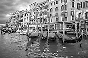 Venice gondolas on the Grand Canal in black and white photo