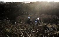 SCHIERMONNIKOOG - Wandelen door de duinen. Duinen COPYRIGHT KOEN SUYK