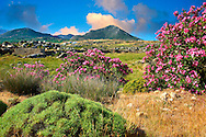 Kalamitsia , Naxos, Greek Cyclades Islands