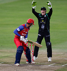 CSA T20 : Dolphins v Lions