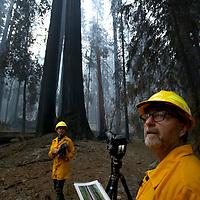 CZU August Lightning Complex<br /> Damage at Big Basin Redwoods State Park<br /> Thursday September 3, 2020<br />  (Shmuel Thaler - Santa Cruz Sentinel)