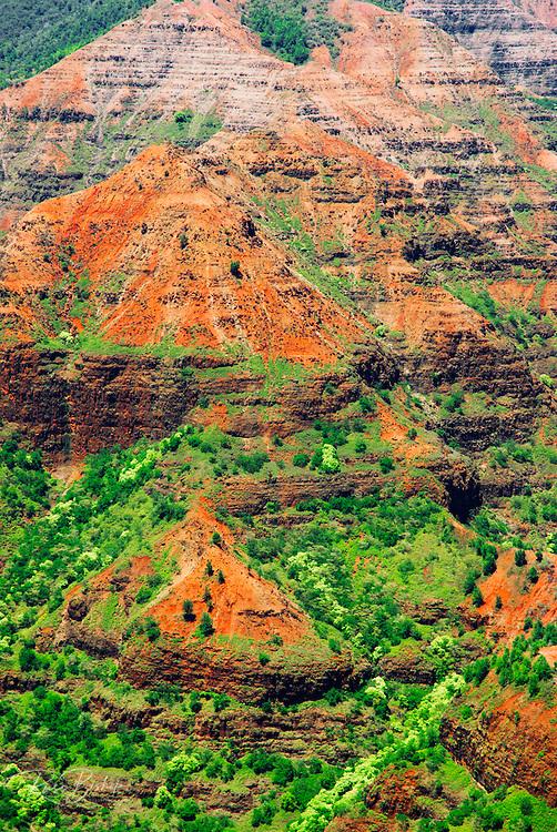 Waimea Canyon from Waimea Canyon Lookout, Island of Kauai, Hawaii