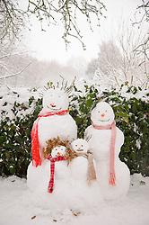 Snowman's family portrait