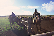 Ranchers, Easter Island, Chile (editorial use only, not model released)<br />