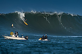 surf   surfing   surfers