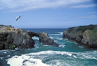 The arch on the Mendocino Headlands State Park, Mendocino, California