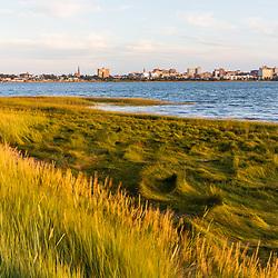 Salt marsh on the shoreline of Back Cove in Portland, Maine.