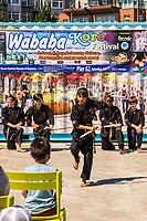 Wababa Korea Festival, Pier 62, Seattle Waterfront (Saturday, July 17, 2021)