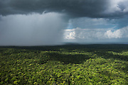 Rain in forest<br /> Potaro-Siparuni Region<br /> Brazil Guyana border<br /> GUYANA<br /> South America