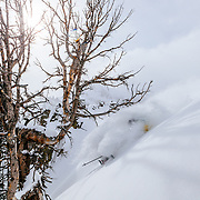 Forrest Jillson grabs late afternoon powder turns in the Teton backcountry.