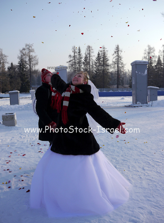 Saint Petersburg, Russia, Winter wedding at minus 25 Celsius. Bride throws rose petals in the air to celebrate her marriage