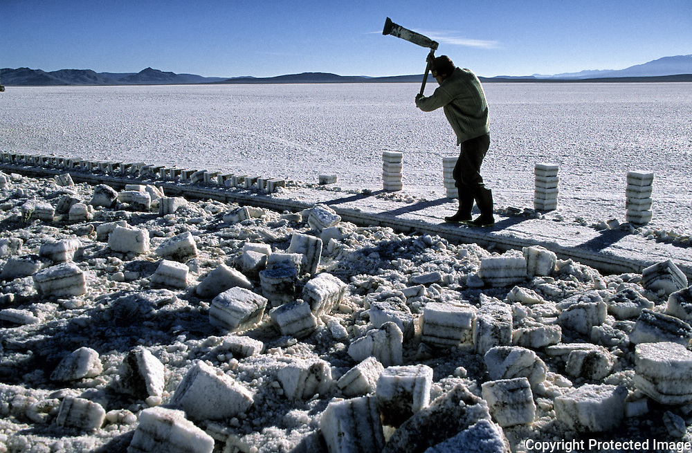 Works of extracion of blocks of salt realized by Fredy, like all his companions covers the face to be protected from the sun and from the cold .  Salar de Uyuni ( Uyuni salt flat ) . Department  of Potosí  ( Los Lipez).  South West  Bolivia. <br /> Adult Altiplano America Andes Arid  Aridity Axe Barren  Bicycle Block  Bolivia Cleaver Color Colour Cone  Day Daytime  Department  Desert Desolate Desolation Dry  Exterior Extraction  Geography Hack Hard Hatchet  Heat Highlands  Horizon  Human  Latin America Lake  Lined Los Lipez Male Man Men Miner Mining Nature  Resource  Natural  One Outdoors Outside  Pan People  Person Pyramide Potosí  Production  Region Resource Rural Salar de Uyuni  Salt Flat  Salt Pan  Salt lake  Scenic Seasoning  Single Shape South America  Southwest  Sud Sunglasses  Surface Travel  Vertical West White Work  Worker Working