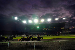 Moon Island ridden by jockey Hollie Doyle wins the Unibet 3 Uniboosts A Day Nursery at Kempton Park Racecourse, Surrey. Picture date: Wednesday October 13, 2021.