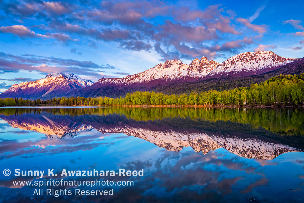 Pioneer Peak and Twin Peaks of Chugach Mountains reflects on Reflections Lake at sunset. Sunset glows on the snow capped peaks. Palmer Hay Flats, Southcentral Alaska, Spring.