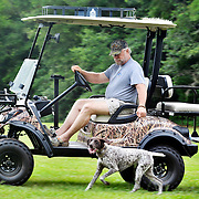 Rand Ward, of Port Royal, accompanies his German shorthaired pointer named Summer on a run using his golf cart while near the Bruce Edgerley Memorial Ball Park off of Old Shell Road and 16th Street on July 6, 2014.