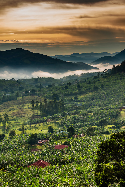 Beautiful landscape with fog, on road between Queen Elizabeth NP and Bwindi Impenetrable Forest, Uganda.