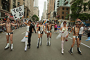 A group celebarting marriage in all its varieties in the 2011 Pride Parade on New York's Fifth Avenue. New York legalized gay marriage less than two days prior to the start of the parade.