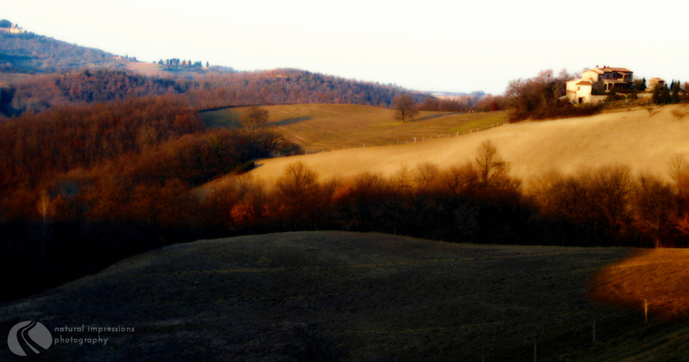 A Tuscan dawn as the morning shadows creep away from the rolling hills that define the Tuscan region of Italy.