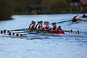 Crew: 160   Op 8+ BAND-2   Oxford Brookes University Boat Club   OXB-KING<br /> <br /> Wallingford Head 2017<br /> <br /> To purchase this photo, or to see pricing information for Prints and Downloads, click the blue 'Add to Cart' button at the top-right of the page.