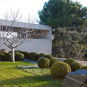 Modern Garden 782