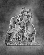 2nd century AD Roman marble sculpture known as the Farnese Bull from the Baths of Caracalla, Rome, Farnese Collection, Naples Museum of Archaeology, Italy. Black and White Wall art print by Photographer Paul E Williams
