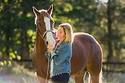 Retired American quarterhorse posing in late summer in Rhode Island.